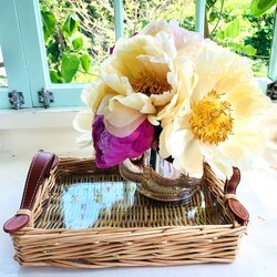 Mini Wicker Tray